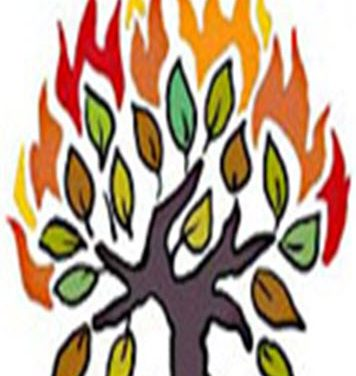 Daily Zohar # 1602 – Shoftim – The Burning Bush