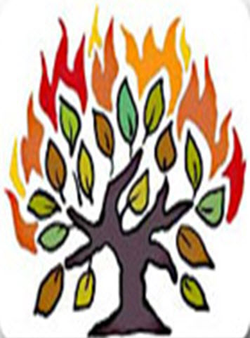 Daily Zohar # 1602 – Shoftim – The Burning Bush
